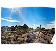 Sonoran Sunlight and the Wash Poster