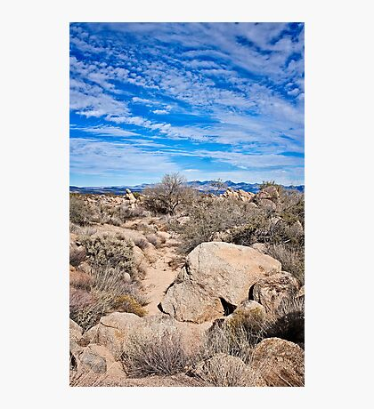 To the Sonoran Sky and Back Photographic Print