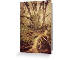 Ragged Wood Greeting Card