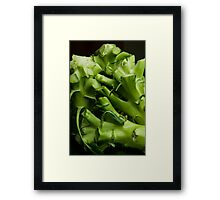 Green abstraction Framed Print