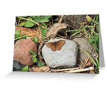 Brown Butterfly on a Rock Greeting Card