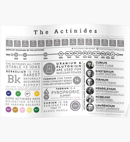 Element Infographics: The Actinides Poster