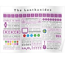 Element Infographics: The Lanthanides Poster