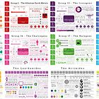 Element Infographics: All in One by Compound Interest