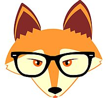 Red Fox with Glasses Photographic Print