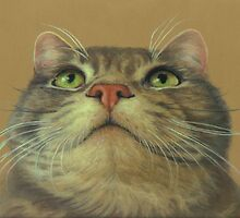 Cat Looking Up--a Pastel Drawing by Pam Humbargar