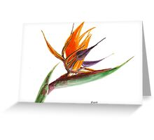 Bird of Paradise Flower 2 Greeting Card