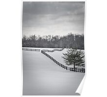 The Color of Winter BW Poster