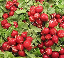 Reddish Radishes by Monnie Ryan