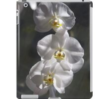 Sunlit Orchids iPad Case/Skin