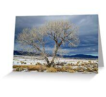 Lone Tree Utah Greeting Card