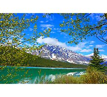 Jasper National Park, Alberta Photographic Print