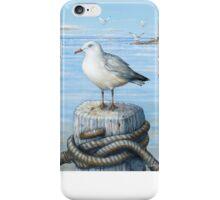 Sea Gull  iPhone Case/Skin