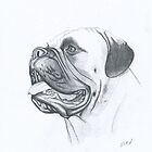 BULLMASTIFF by David Lumley