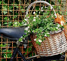 BICYCLES and BASKETS of BLOOMS by Pete Klimek