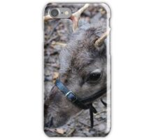 What! No Red Nose. iPhone Case/Skin