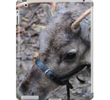 What! No Red Nose. iPad Case/Skin