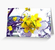 beautiful flower in Viet Nam  Greeting Card