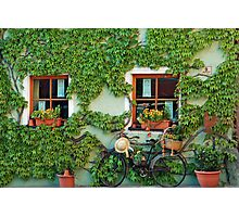 Pleasing facade Photographic Print