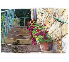 Worn Steps and Flowerpots Poster