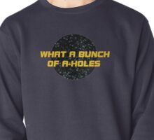 What a bunch of A-holes Pullover
