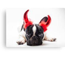 bulldog dressed up as a devil  Canvas Print