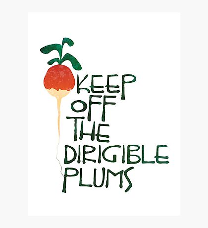 Keep Off the Dirigible Plums Photographic Print