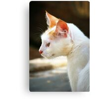 Where Are You Human?  Canvas Print