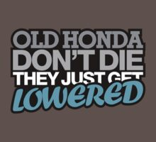 Old HONDA don't die they just get lowered - 4 by TheGearbox
