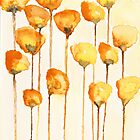 California Poppy Watercolor by Tess Johnson
