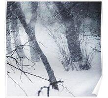 blizzard 2014 Poster