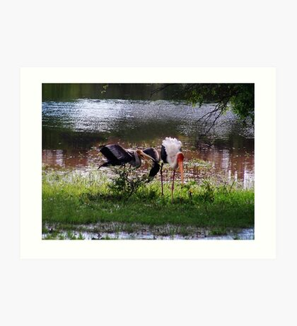 MALE STORK ♥ROMANCING THE FEMALE PAINTED STORK♥-VERSION THREE-THATS AMORE-- VARIOUS APPAREL Art Print