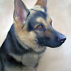 German shepherd Pastel painting by Peter Skillen