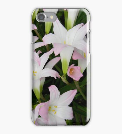 lily wash iPhone Case/Skin