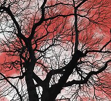 Tree Colours Red by SarahJanesCards