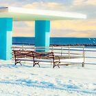 Winter Boardwalk Shelter by Chris Lord