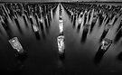 Princes Pier Pylons by Mieke Boynton
