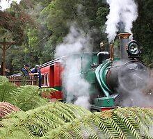 Train Old Tasmania by R-Summers