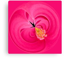 Hot Pink and Round Canvas Print