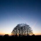 Winter Sunset by Anne Gilbert