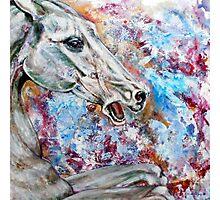 Horse III Photographic Print