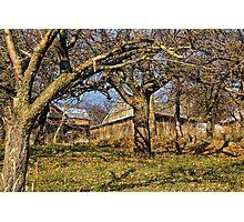 rural farm Photographic Print