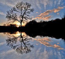 Cosmeston Lakes Country Park by Paula J James