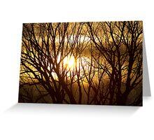 Golden Tree Dream Greeting Card