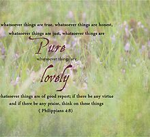 Whatever Is Lovely Think On Such Things-Scripture Photo by radicallyrooted