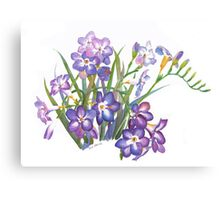 Purple Freesia in Spring Canvas Print