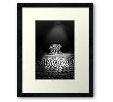 ©DA Enlightening IA Monochromatic Framed Print