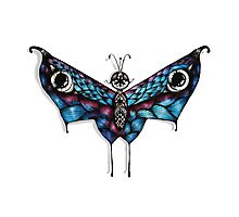 Hell Butterfly Photographic Print
