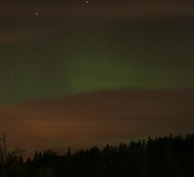 The Northern Lights  by Will Duffy