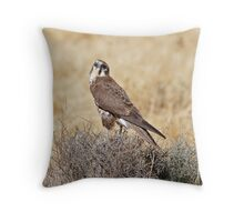 Brown Falcon ~ Patience Throw Pillow
